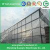 Großes ökonomisches Glasgewächshaus mit Ventilations-System für Verkauf