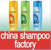 Champú de cabello ,Nueva marca de champú. La creación de OEM de etiqueta privada de Shampoo (5ml-5000ml).