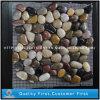 يعشّق طبيعيّ [2-3كم] بيضاء/صفراء/رماديّ/حمراء حصاة حجارة