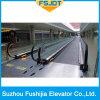Marciapiede della pavimentazione della camminata mobile per l'aeroporto e la stazione ferroviaria