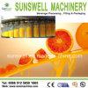 De Installatie van de Vervaardiging van de drank/Het Vullen van het Vruchtesap Machines voor Pulp