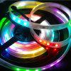 Iluminação endereçável flexível do Pub da tira do diodo emissor de luz de 5050 RGBW
