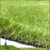 자연적인 잔디 롤