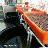 Tanque de peixes plástico Aquaponics
