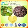 良質のHovenia Dulcis Thunbのエキスの精液のHoveniaeのエキスの新製品