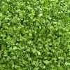 잘리는 탈수된 녹색 골파류 반지 3X3mm