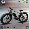 Vélo électrique de plage de gros pneu avec la suspension