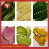 Riga asciugatrice di trasformazione delle verdure della cipolla/disidratatore