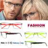 Llegada de nuevas gafas de moda del bastidor bastidor metálico con CE y FDA
