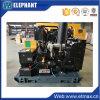 Générateur de diesel monophasé 112kw 140kVA Quanchai à C.A.