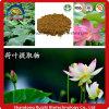 체중 감소 제품 자연적인 플랜트 적출 로터스 잎 Nuciferine 추출