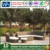 Sofà dell'angolo della mobilia del giardino del rattan impostato (TG-JW23)