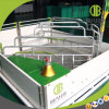 Hoge Strengh Gegalvaniseerde het Werpen van Varkens Kratten voor de Apparatuur van het Landbouwbedrijf