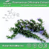 Естественная кислота выдержки 5%~60% Carnosic Officinalis Rosmarinus