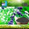 Il fertilizzante organico biologico basato carbonio di Kingeta migliora la microflora del terreno