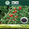 Il carbonio di resistenza di malattia di Kingeta ha basato il fertilizzante composto NPK 22-7-11