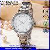 La aduana de la mujer mira el reloj del acero inoxidable del movimiento del cuarzo de Japón (WY-17002B)