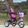 La vendita calda scherza le automobili da vendere il triciclo poco costoso del metallo dei capretti