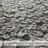 Guipure Puntilla Puntilla de cordón de algodón de la flor de tela (M3477-G)