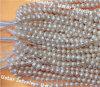 LadyのためのUstar Jewelry Fresh Water Pearls