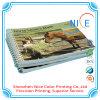 Alta qualità Color Print Book con Soft Cover