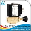1/4 真鍮のHot Water Heater Steam Vacuum Cleaner 24V 36V 110V 220V Soleonid Valve Zcq-20b-180
