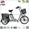 250W LEIDENE Met drie wielen Met drie wielen van de Driewieler Electiric van de Batterij van het Lithium van E Elektrische Vertoning