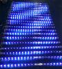 Indicatore luminoso della fase di effetto della meteora di controllo LED di Madrix del randello del principale 100 di Colordreamer