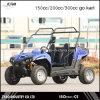 Diferencial de Go Kart 150cc no deserto o Veículo