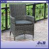 옥외 정원 등나무 가구, 4mm 놓이는 둥근 고리 버들 세공 팔 의자 (J2391)