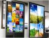 стена 32inch установила индикацию LCD