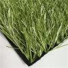 اللون الأخضر زيتونيّ اللّون عشب اصطناعيّة واصطناعيّة عشب لأنّ كرة قدم كرة قدم