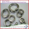 DIN127b het Gegalvaniseerde Geplateerde Zink HDG van de Hete ONDERDOMPELING en de Wasmachine van de Lente van het Roestvrij staal DIN127