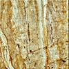 De beste Tegel van de Vloer van het Porselein van de Prijs Volledige Opgepoetste Verglaasde Marmeren