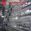 Kooi 3/4/5 van de Grill van de Apparatuur van de Landbouw van het Gevogelte van Jinfeng Rijen