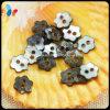 Loch-Natur Akoya Perlen-Shell-Taste der Blumen-Form-zwei