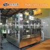 Glasflasche CSD-Produktionszweig