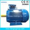 Fase de Ye2 3 elétrica e motor do ferro de molde da indução