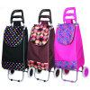 Portable sac chariot pour faire du shopping et les voyages (SP-542)