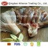 Perna inteira de frango congelado Halal/Picar