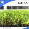 [20مّ] منظر طبيعيّ عشب اصطناعيّة لأنّ زخرفة بيتيّة