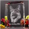 Cube animal en cristal de gravure de photo