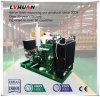 Förderung gebildet Zustands-Biogas-Generator-Set China-30kw im neuen