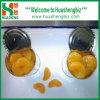 Laranja mandarim enlatada (HSCMO-001A)