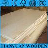 4*8FT Peuplier bouleau contreplaqué commerciale de base pour le mobilier