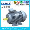 Motor elétrico 55kw de eficiência elevada de 3 fases