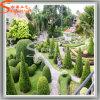 Topiary Boom van de Installatie van de Decoratie van het Park van de tuin de Kunstmatige