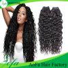 ほとんどの流行のブラジルの毛の拡張バージンの自然なカーリーヘアー