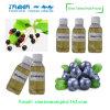 Heißer verkaufene-flüssiger Blaubeere-Aroma Vaping Saft für elektronische Zigarette