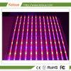 LED Keisue Indoor Les plantes qui poussent la lumière à spectre complet